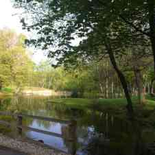 silver-hills-pond-cropped_orig