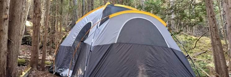 Acadia-East-Campground-Wonderland-Campsite-sm-1600x533
