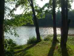 Stonelick State Park