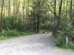Black Bear Campground