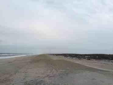 Assateague National Seashore