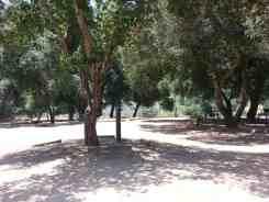 Bogart County Park