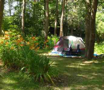 Sippewissett Campground & Cabins