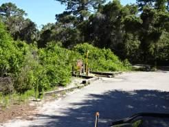Oscar Scherer State Park Campground