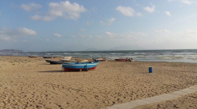 Licola, sabato studenti e biologi insieme per far tornare le tartarughe in spiaggia
