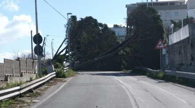MONTE DI PROCIDA/ Via Panoramica chiusa al traffico, riaprirà domani dopo le verifiche