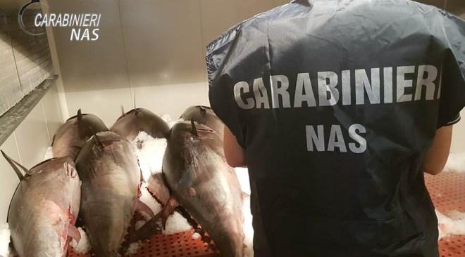 POZZUOLI/ Sequestrato pesce, privo di tracciabilità, ad un ristorante sul porto