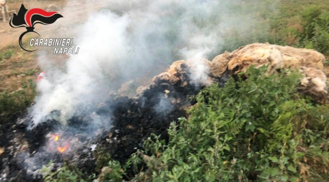 GIUGLIANO/ Incendio di rifiuti chimici su un campo coltivato a ortaggi: 32 denunce dei carabinieri