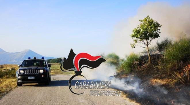 AGNANO/ Due persone denunciate per l'incendio boschivo di giovedì dai Forestali