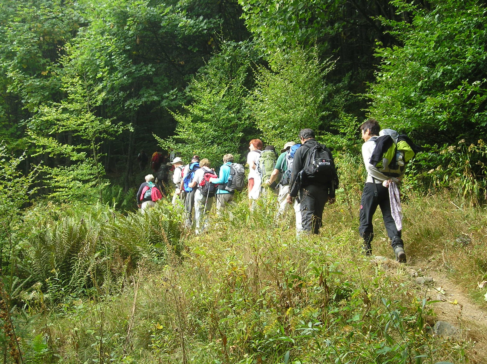 Hikes Camping Le Florival 224 Guebwiller