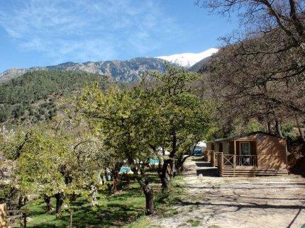 vue_du_bas_de_camping_les_cerisiers_et_du_mont_canigou_enneigé_comprenant_cerisiers_et_mobil_home