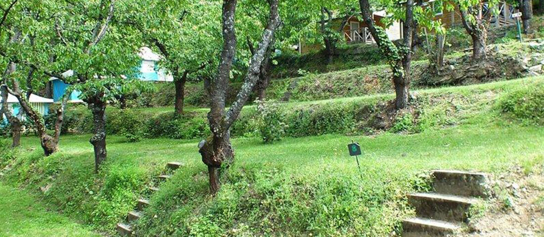 bengalis_mobil-home_emplacements_tentes_camping_les_cerisiers_vernet_les_bains