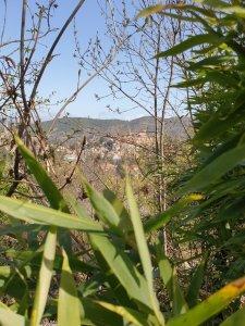 vue_vernet_les_bains_depuis_emplacements_camping_les_cerisiers