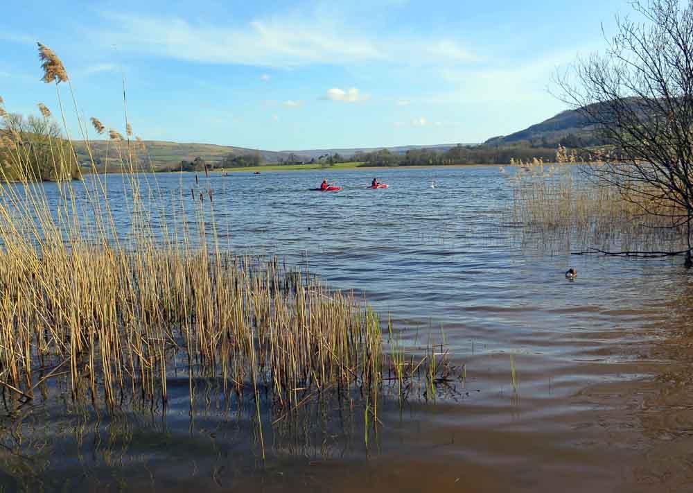 Llangorse Lake   Camping Brecon Beacons   Cwmdu Campsite