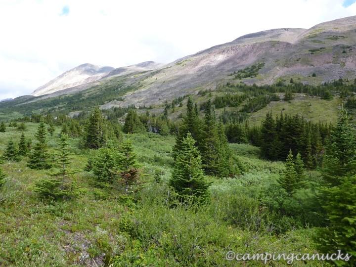 Lower Jonas Pass