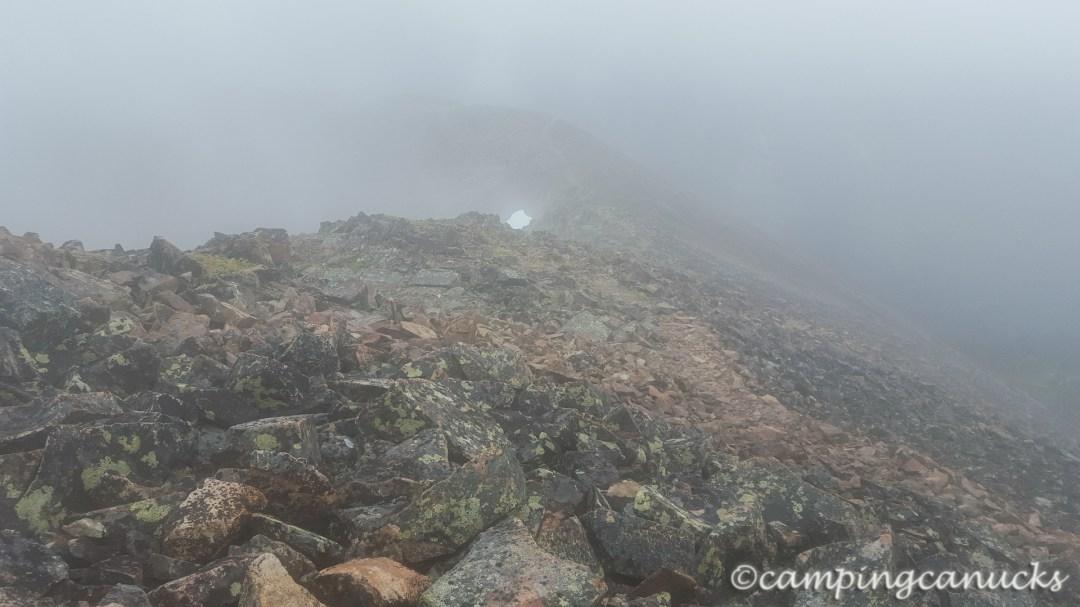 A foggy trail
