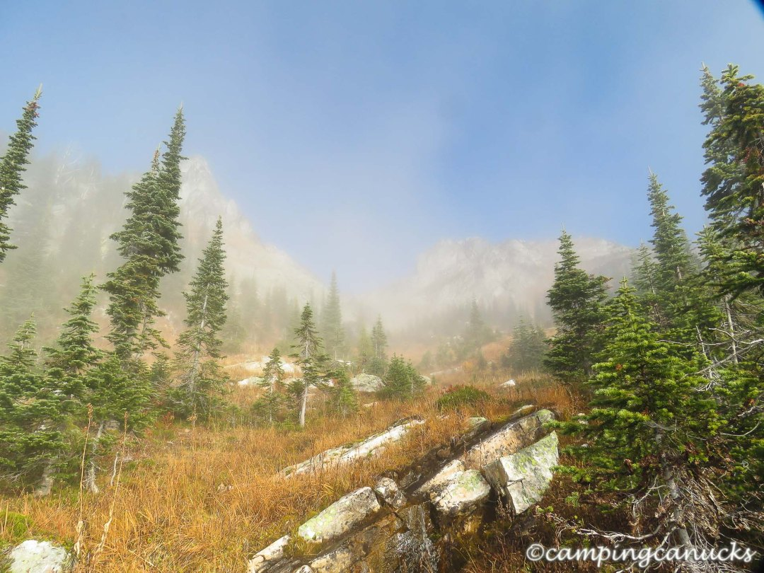 Fog thinning near the treeline
