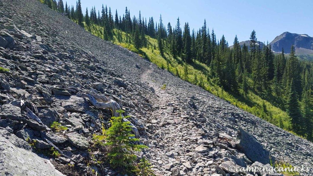 Trail crossing a slide path