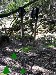 Bastoncini da trekking leggeri