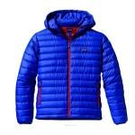 piumino Patagonia Down Sweater Hoody