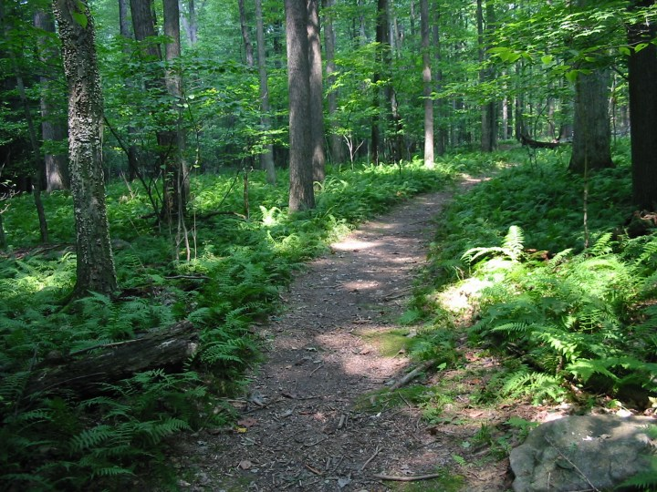 The-Buckeye-Trail11