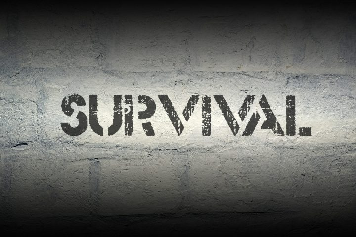 Survival Text