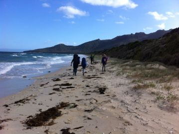 hiking with kids at beach