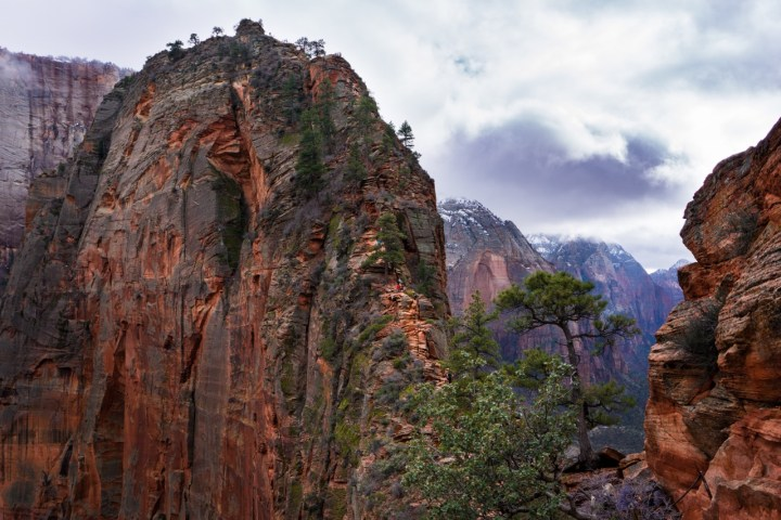 Zion in Winter 6
