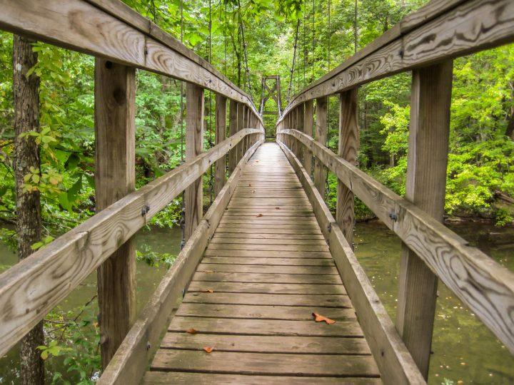 Appalachian Trail 12