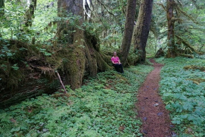 Hiking the Hoh Rainforest 3