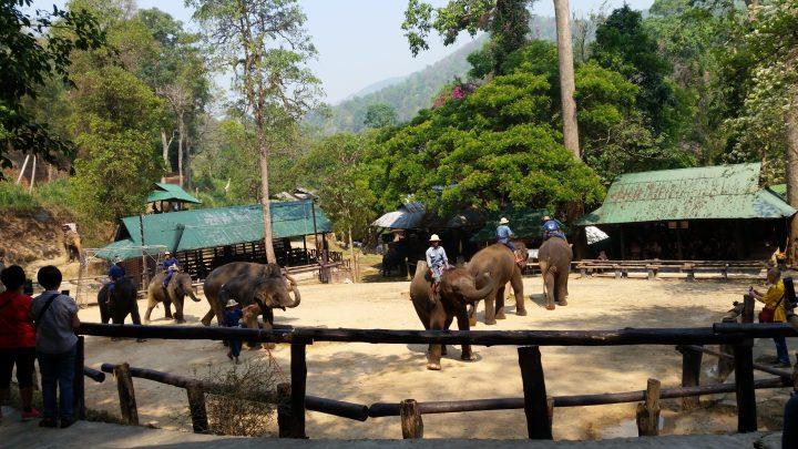 Northern Thailand 21