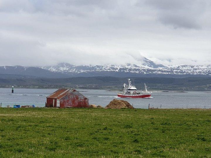 Boat near the Lofoten Islands