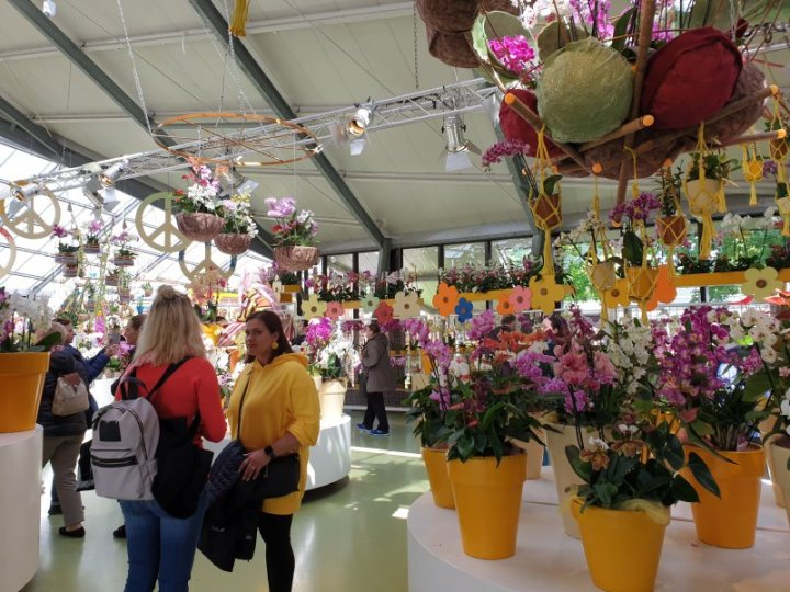 Competitions for the best flowers were held in the Pavilion
