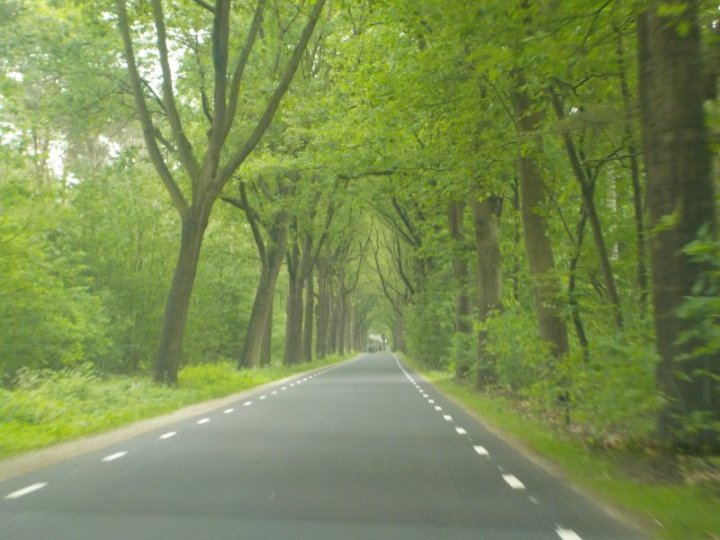 Outside Holten, The Netherlands