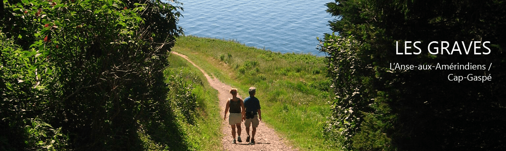 le sentier cap-gaspé, blog du Camping Griffon