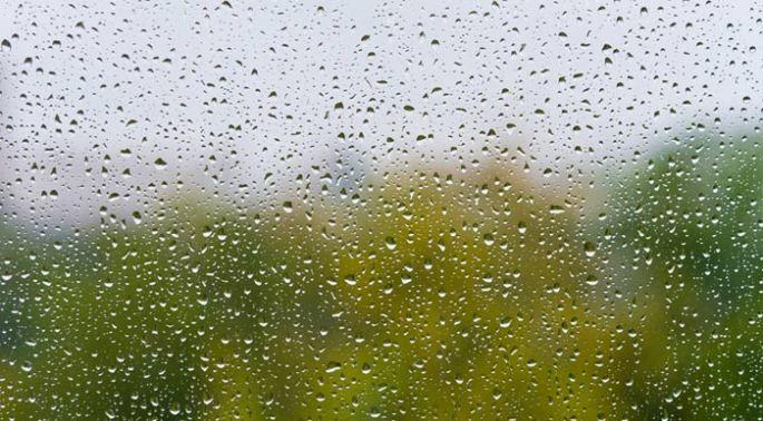 Condensation (Shutterstock, Dudaeva)