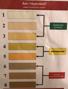The BSA Hydration chart helps determine hydration level from your urine color.