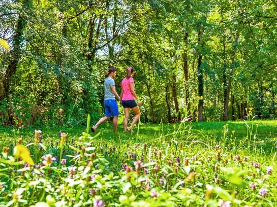 camping nature Toulouse