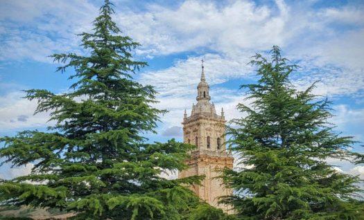 Torre catedral el burgo de osma