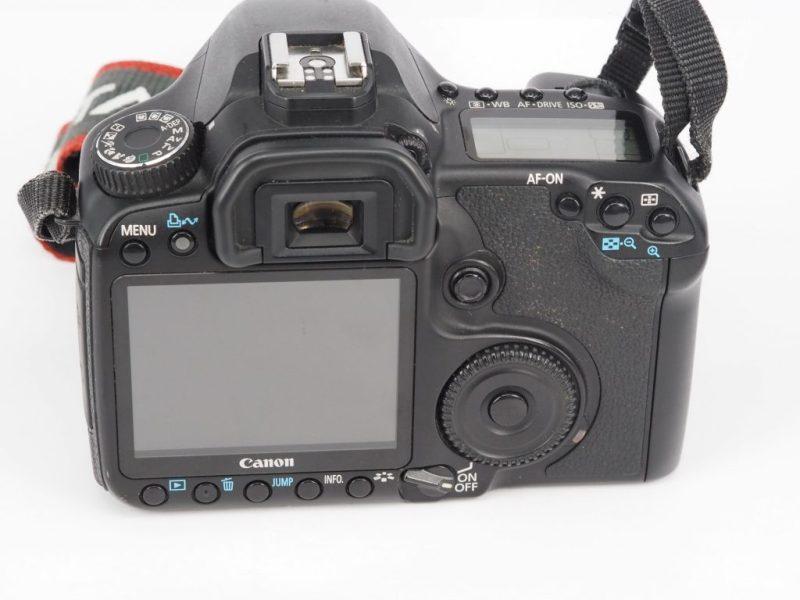 P5040063 scaled