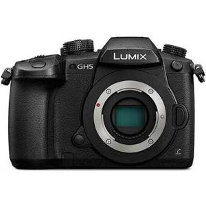 Panasonic Lumix DMC-GH5 Digital Camera Body