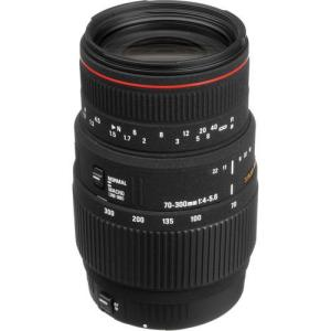 Sigma 70-300mm f4-5.6 APO Macro Super DG Lens