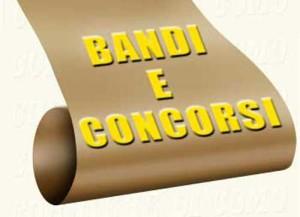 bandieconcorsi-300x217