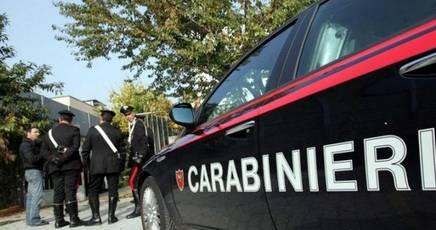Canili abusivi, blitz dei carabinieri Scattano sequestri a Erice e Valderice