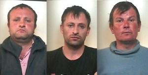 rumeni arrestati