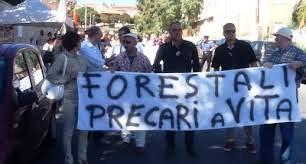 Il governo regionale sospende i lavoratori forestali per mancanza di fondi