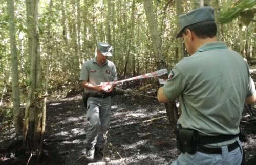 Carabinieri Forestale: Arrestato presunto piromane nel comune di Viterbo [video]
