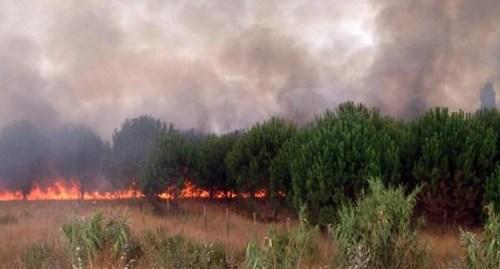 RAGUSA. Vigili del fuoco volontari, avrebbero appiccato roghi per soldi [Video]