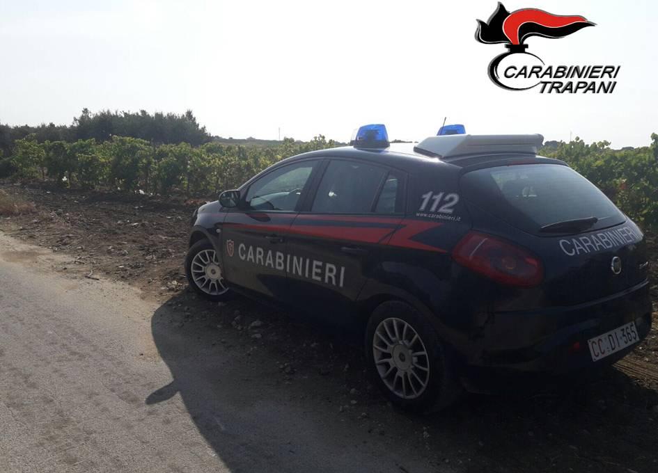 Marsala. Sorpresi dai carabinieri a rubare uva in un terreno: un arresto e tre denunce.
