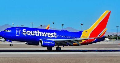 USA, passeggero tenta di molestare in aereo la sua vicina di viaggio: arrestato dopo atterraggio d'emergenza